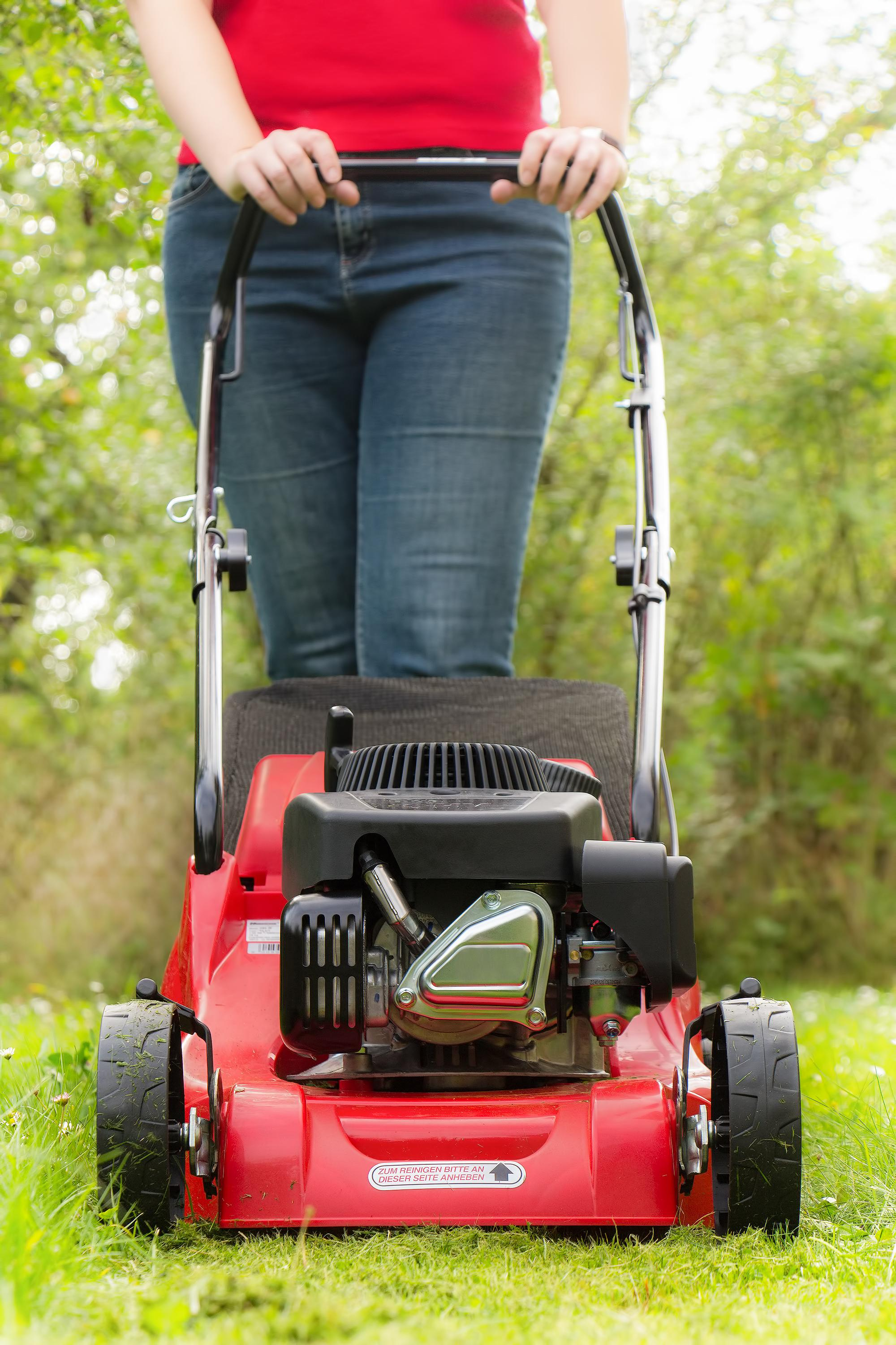 The Best Petrol Lawn Mower 2018 Lawn Mower Wizard