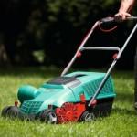 Lawn Scarifier Reviews