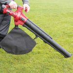 Trueshopping Cordless Electric Leaf Blower Review