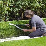 June Gardening Tasks