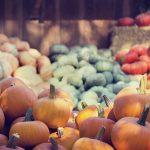 Growing Your Own Pumpkins