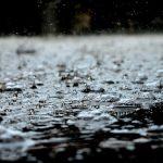 Harvesting Rainwater For Use in The Garden